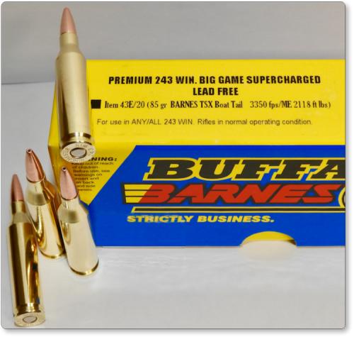 PREMIUM 243 WIN  BIG GAME SUPERCHARGED-LEAD FREE Ammo Rifle